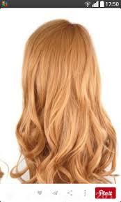 Light Strawberry Blonde Hair Brown To Strawberry Blonde Forums Haircrazy Com