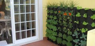 gardening without a yard minigarden us