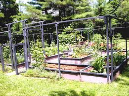 Small Kitchen Garden Ideas Small Vegetable Garden Design Ideas Garden Desert Vegetable Garden