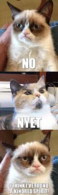 Grumpy Cat No Meme - grumpy cat meets lenin cat imgflip