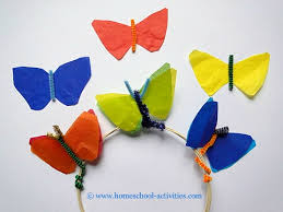cycle of a butterfly pictures and crafts activities