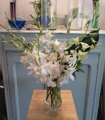 flower delivery minneapolis minneapolis flower delivery â tropical orchid arrangement