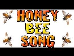 25 bee bee ideas