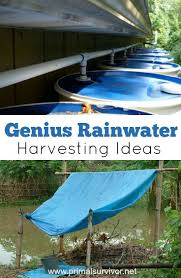 25 best rainwater harvesting ideas on pinterest rainwater