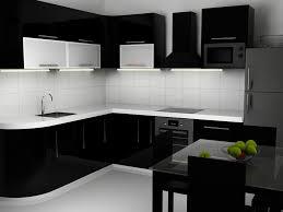 Home Design Photos Interior Kitchen Modern Kitchen Interior Black And White Designs