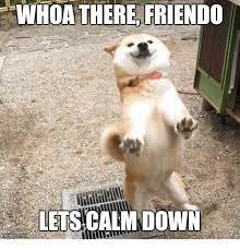 Calm Down Meme - whoa there friendo lets calm down down meme on me me