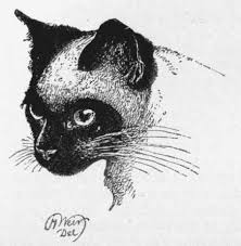 the project gutenberg ebook of our cats by harrison weir