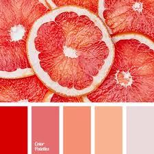 25 trending orange color ideas on pinterest orange orange