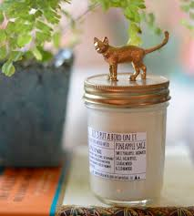 Sage Home Decor Cat Lid Pineapple Sage Scented Soy Candle Home Decor U0026 Lighting