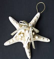 starfish ornaments shells hawaii sea shells hawaii gifts