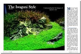 Small Tank Aquascaping Where Do You Aquire Seiryu Seki Maten And Or Shou Stones