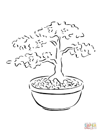 bonsai miniature tree coloring page free printable coloring pages