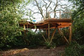 the treehouse floor goes in harptree court