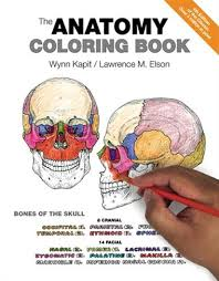 the anatomy coloring book book by wynn kapit paperback