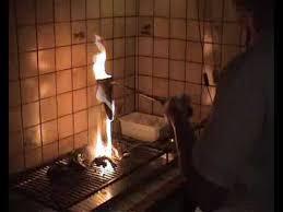 comment cuisiner des palombes cuisson de la palombe au capucin