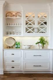 Flush Kitchen Cabinet Doors Amazing Glass Cabinet Doors Kitchen And Decor Regarding Best 25