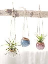 Hanging Ceramic Planter by Best 25 Hanging Planters Ideas On Pinterest Indoor Hanging