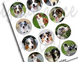 australian shepherd 3d model aussie dog sticker etsy