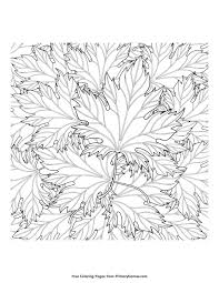 37 coloring pages images free printable fall