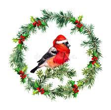 mistletoe hat christmas wreath fir mistletoe and bullfinch bird in santa hat