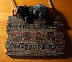 black bear decor collection on ebay