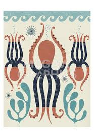 100 octopi home best 25 octopuses or octopi ideas on