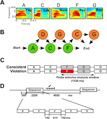 sequence learning modulates neural responses and oscillatory