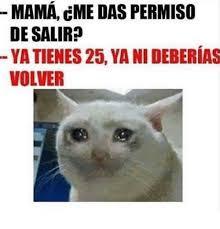 Memes Mama - mama cme das permiso de salir yatienes 25 yani deberias volver