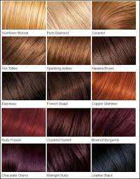 Red Colour Shades Fall In Love With Hair Color Chart Dark Hair Colour Chart And