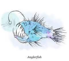 creatures of the deep sea stoke magazinesea stoke magazine