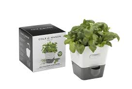 cole u0026 mason fresh herb range self watering potted herb keeper