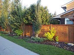 amazing of backyard fence landscaping ideas backyard fence