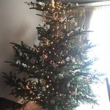 best christmas trees santa mikey s fresh christmas trees 26 photos 69 reviews