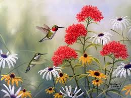 flowers bright wildflowers lovely paintings animals spring pretty