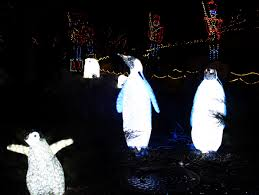 Zoo Lights Lincoln Park by Zoolights At Lincoln Park Zoo