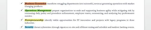 cio sample resume cio sample resume chief information officer