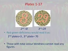 Red Green Color Blindness Tests Color Vision Deficiency And Ishihara U0027s Test