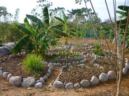 Herb Garden Design Ideas Herb And Vegetable Garden Design Ideas Herb Garden Design For