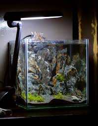 Aquascape Design Layout 96 Best Rock Style Images On Pinterest Aquascaping Rock Style