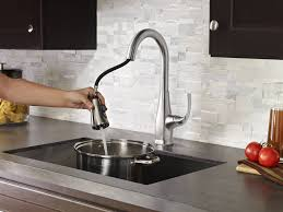 Stainless Kitchen Faucet by Stainless Steel Selia 1 Handle Pull Down Kitchen Faucet F 529