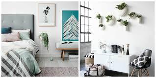 100 best plants for living room plants for living room