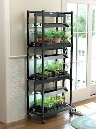100 indoor herb gardens kits click and grow a miniature herb