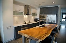 Eco Kitchen Design Eco Friendly Kitchen Decor One Decor