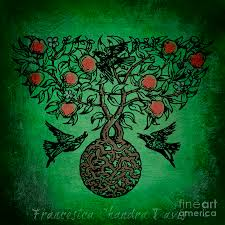 celtic tree of mixed media by sacred muse