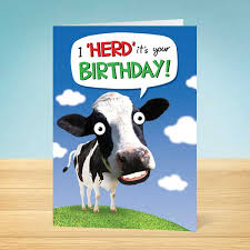 cow greeting cards birthday card happy cow garlanna greeting cards
