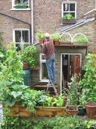 Urban Food Gardens Vertical Veg An Absolutely Awesome Container Gardener In The Uk