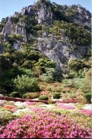 azalea garden in takeo japan picture of mifuneyama rakuen