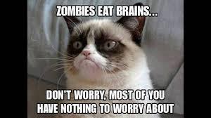 Grumpy Cat Meme Clean - grumpy cat memes youtube