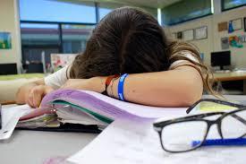 the highlander online sleep deprivation rises in high schools