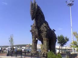 Turuva atının kısa öyküsü